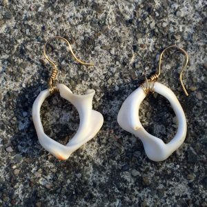 Skin x Bones Shell Earrings